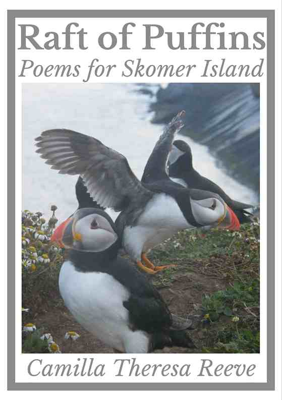 Raft of Puffins, front cover