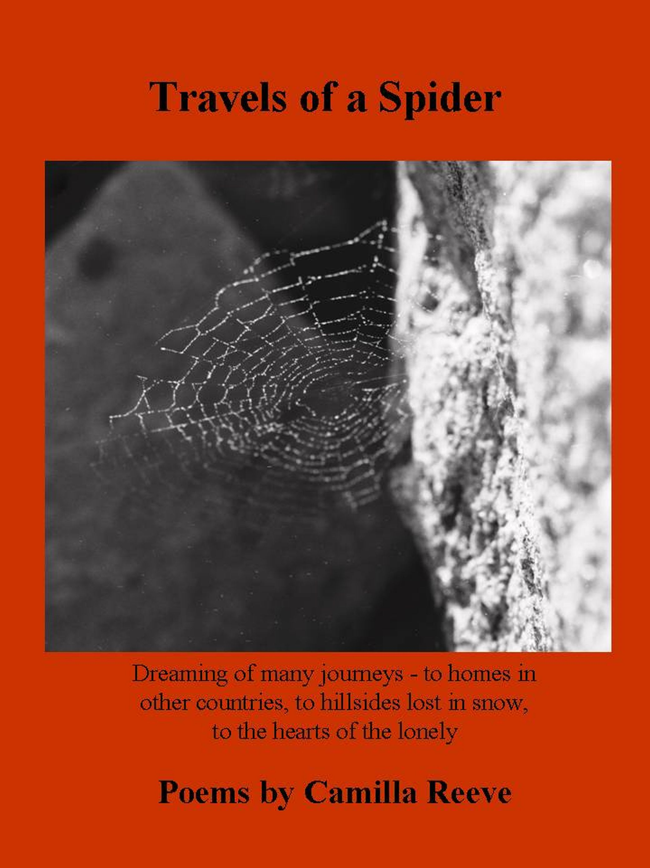 Travels of a Spider, front cover